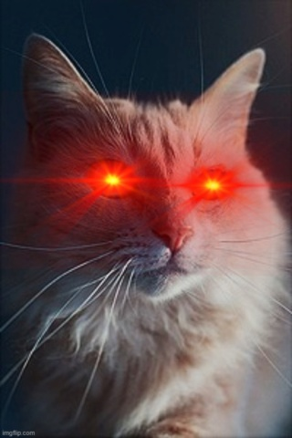 We can all get vaporized [Hermitpaw, Training 2] Nocrys11