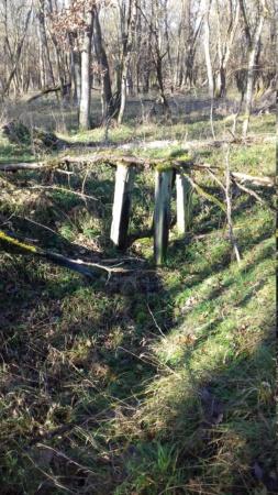 Objets variés sur position d'artillerie us en Alsace 20191145