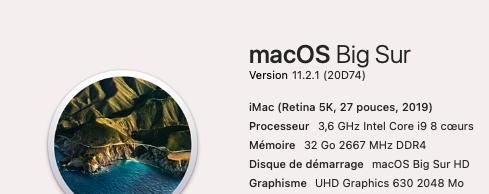 Mise a jour macOS Big Sur 11.2.1 (20D74) 11_2_111