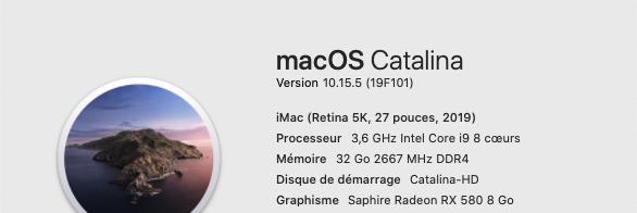 Mise a jour de supplémentaire macOS Catalian 10.15.5 (19F101) 19f10110