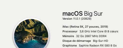 macOS Big Sur 11.0.1 (20B29) Finale version 202910