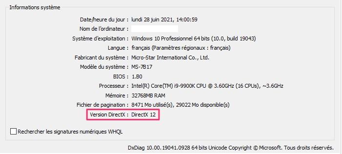 Windows11 Dxdiag10
