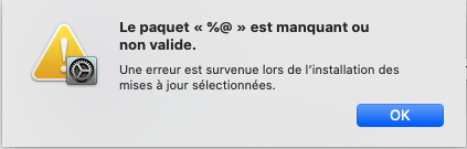 macOS Big Sur 11 / 11.1 / 11.2  (Beta) Paquet10