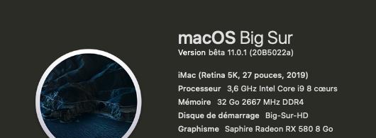 macOS Big Sur 11 Beta - Page 11 Releas10
