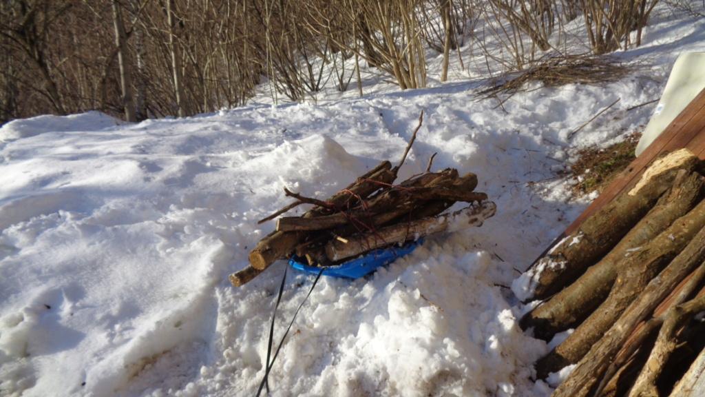 Esbosco per i boscaioli hobbisti - Pagina 6 Dsc03210