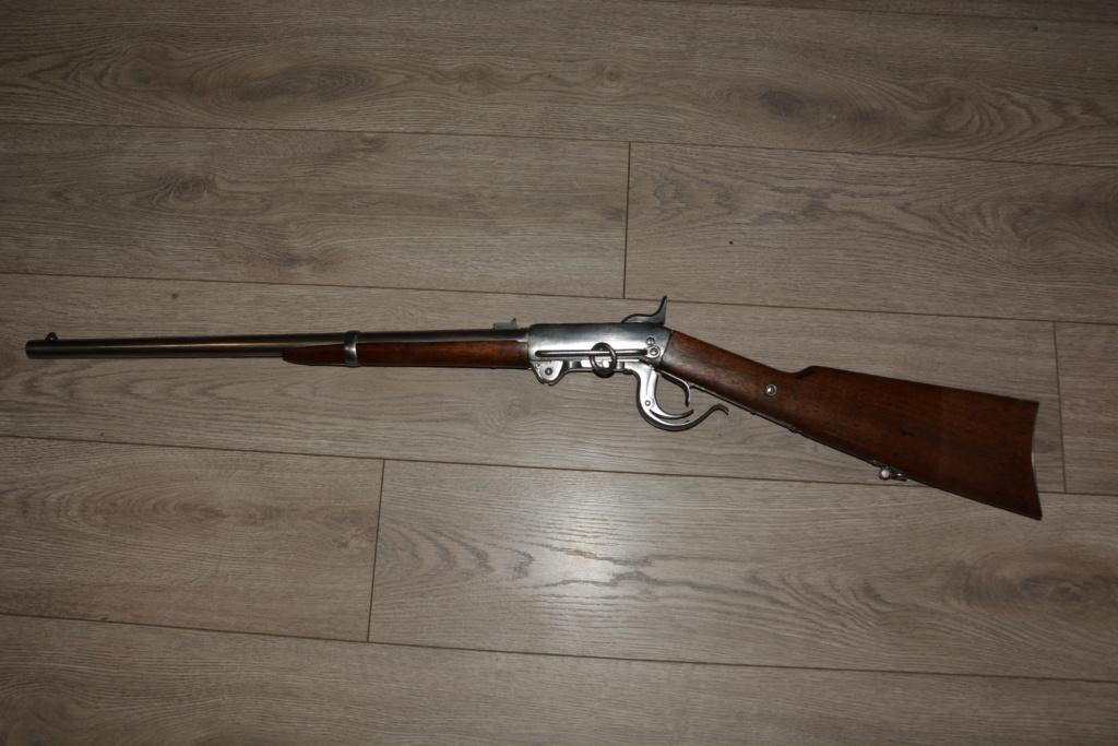 Carabines Burnside Dsc_7824