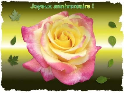 Noyeux Janniverssaire  Joyeux11