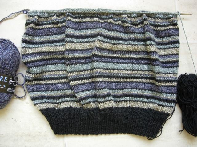 un nouveau pull pour mon mari Dscn2434