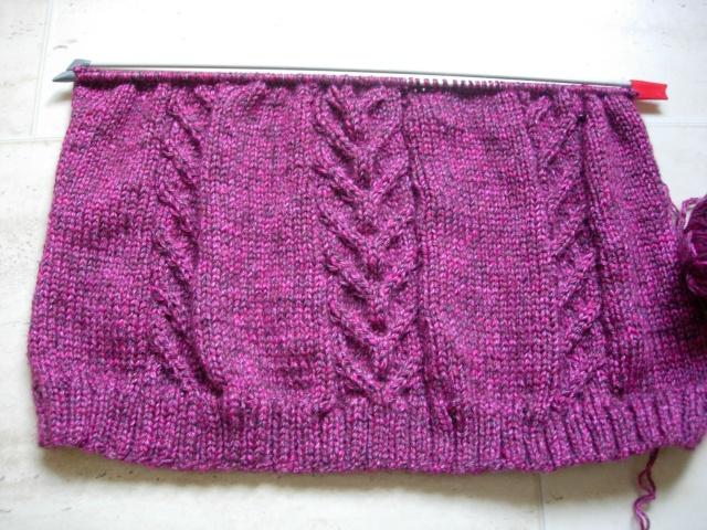 nouvel encours tricot : une tunique et des mitaines assorties Dscn2545