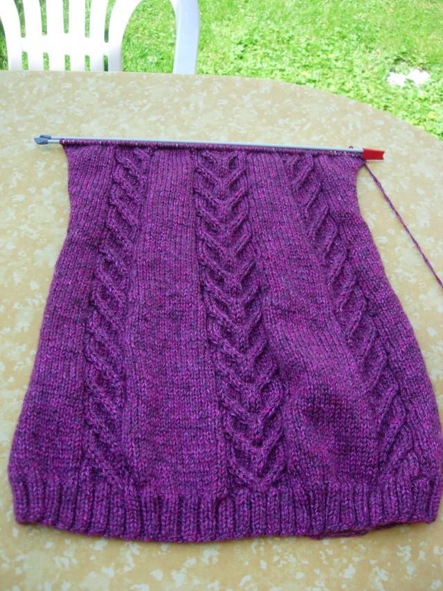nouvel encours tricot : une tunique et des mitaines assorties - Page 2 Dscn2548