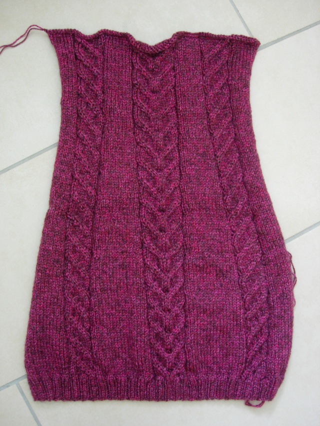 nouvel encours tricot : une tunique et des mitaines assorties - Page 2 Dscn2549