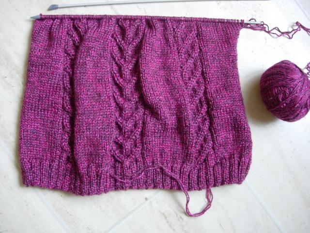 nouvel encours tricot : une tunique et des mitaines assorties - Page 2 Dscn2550