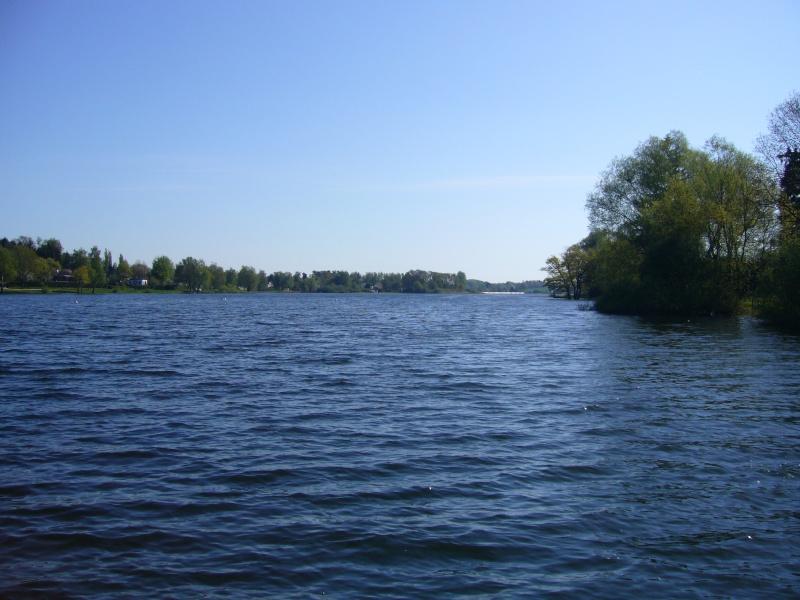 Session au lac de Bouzey (88) P1010313