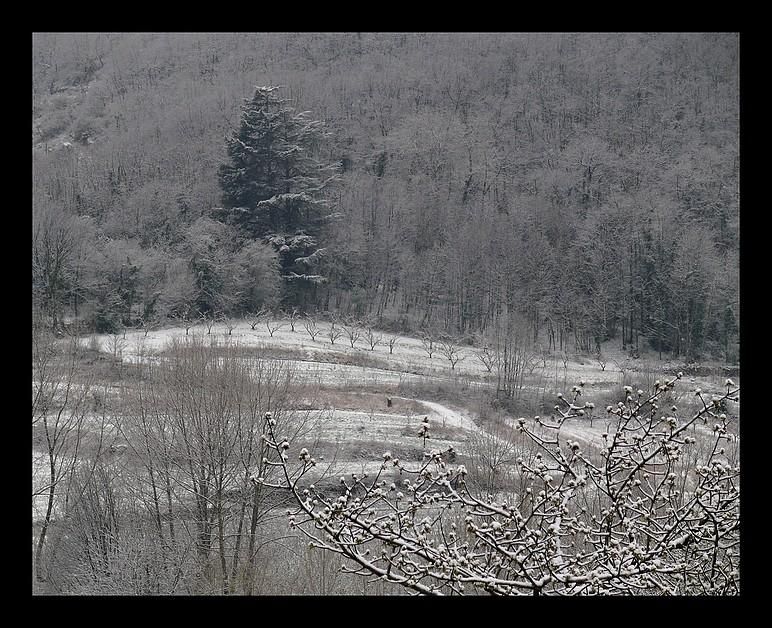 Photos Andance et environs au fil des saisons - Page 2 P1320011