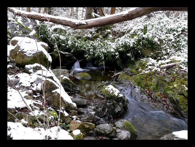 Photos Andance et environs au fil des saisons - Page 2 P1320114