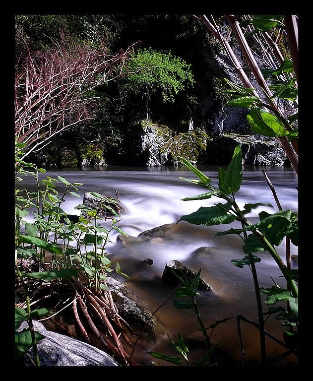 Photos Andance et environs au fil des saisons - Page 2 P1340411