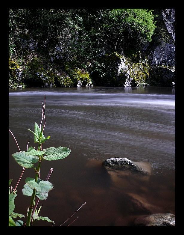 Photos Andance et environs au fil des saisons - Page 2 P1340412