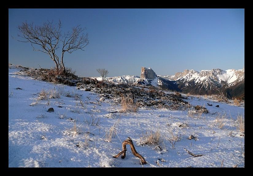 Balade vers le Mont-Aiguille P1350012
