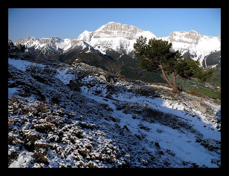 Balade vers le Mont-Aiguille P1350013