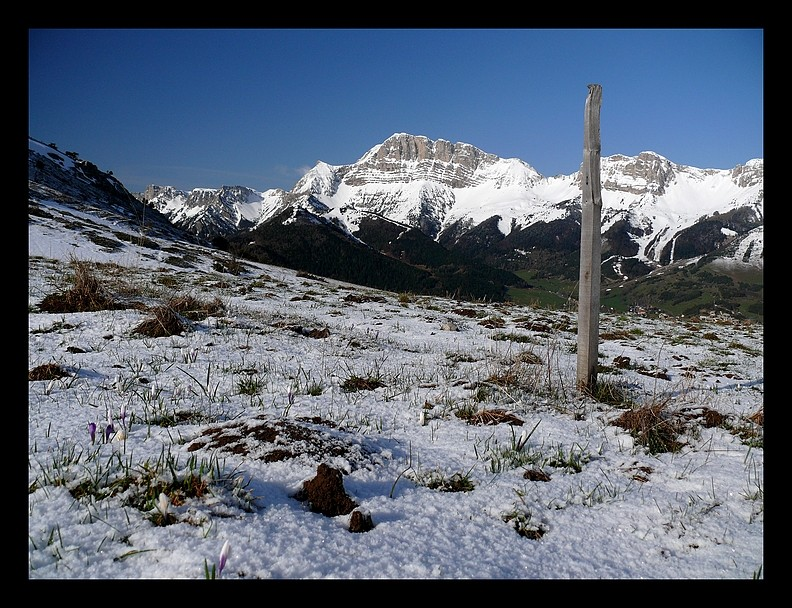 Balade vers le Mont-Aiguille P1350115