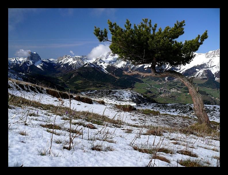 Balade vers le Mont-Aiguille P1350212
