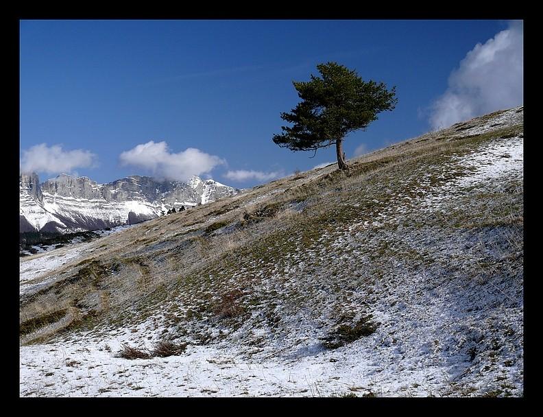 Balade vers le Mont-Aiguille P1350213