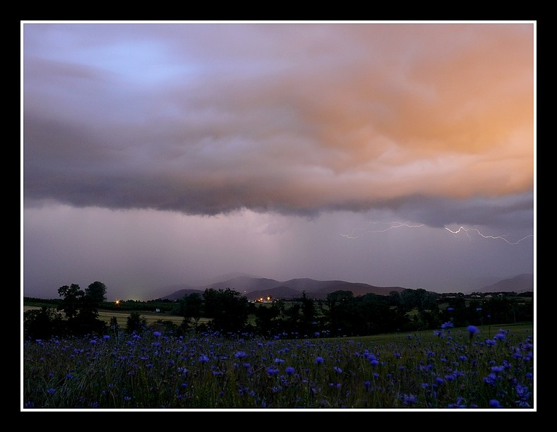 Photos Andance et environs au fil des saisons - Page 3 P1360311