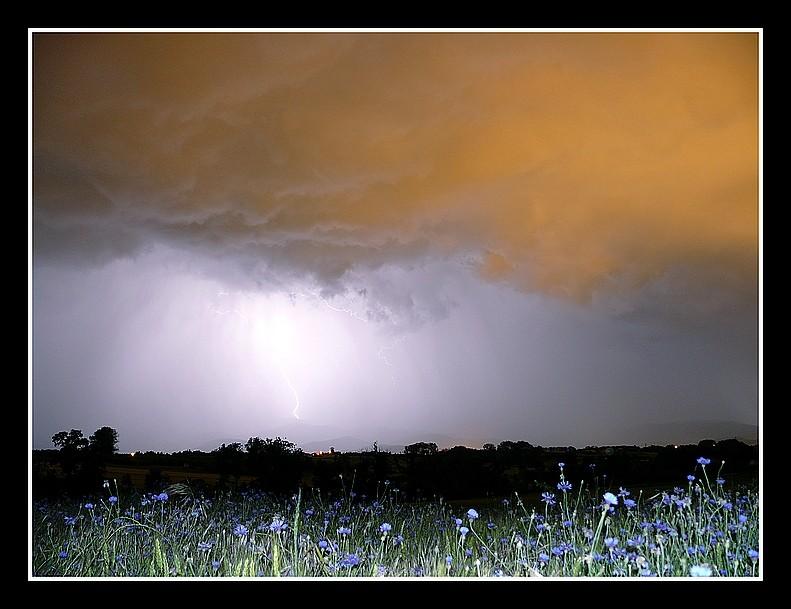Photos Andance et environs au fil des saisons - Page 3 P1360313