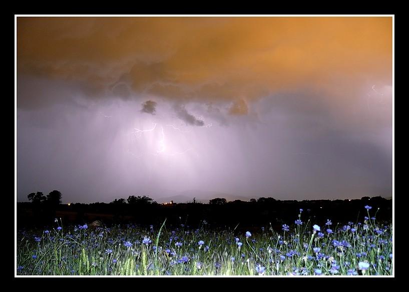 Photos Andance et environs au fil des saisons - Page 3 P1360314