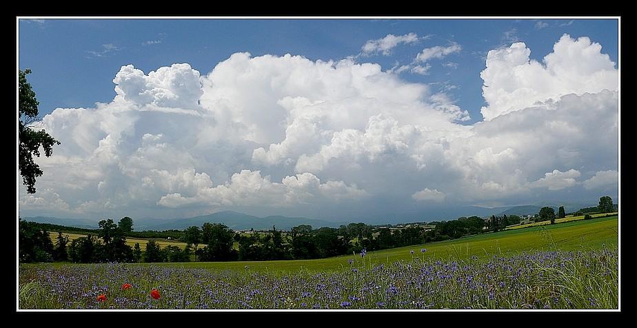 Photos Andance et environs au fil des saisons - Page 3 P1360317