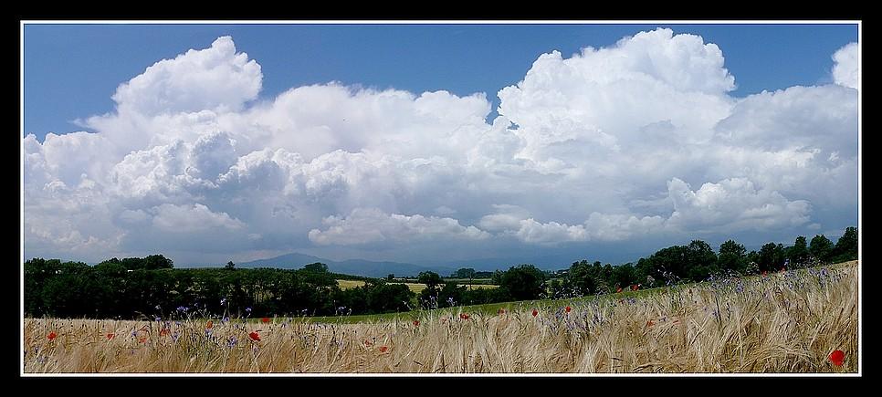 Photos Andance et environs au fil des saisons - Page 3 P1360410