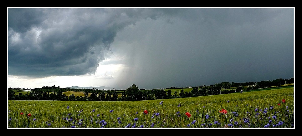 Photos Andance et environs au fil des saisons - Page 3 P1360412