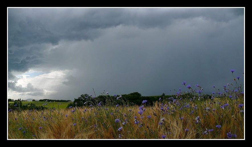Photos Andance et environs au fil des saisons - Page 3 P1360610