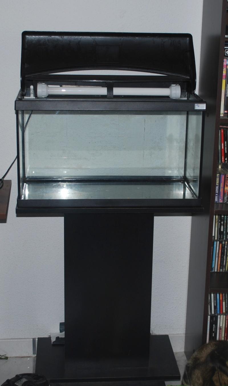 Lot  complet aquarium 60 litres + Lot éclairage Dsc_0711