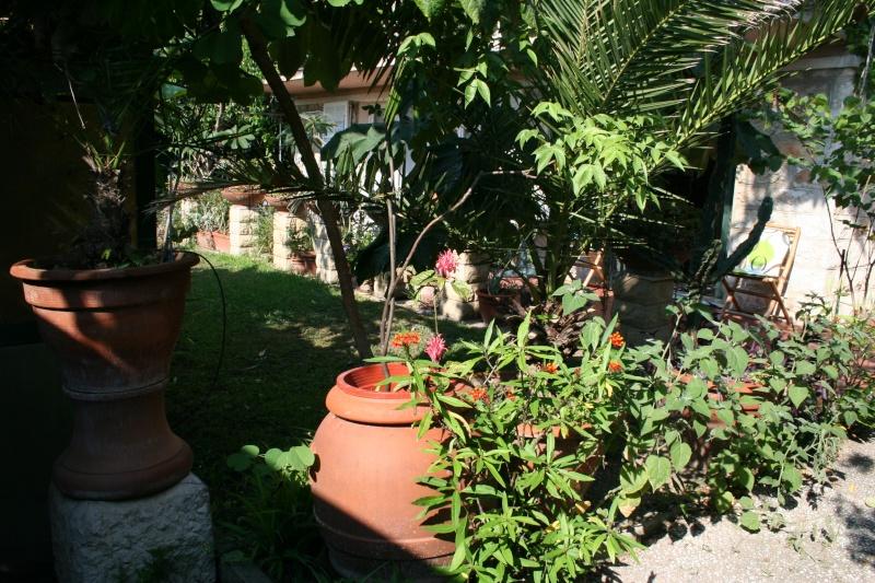Entrée de mon jardin Entae_10