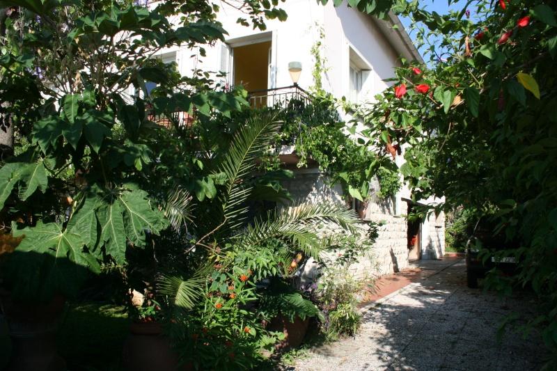 Ambiance dans mon jardin en ce mois d'aout Entrae11