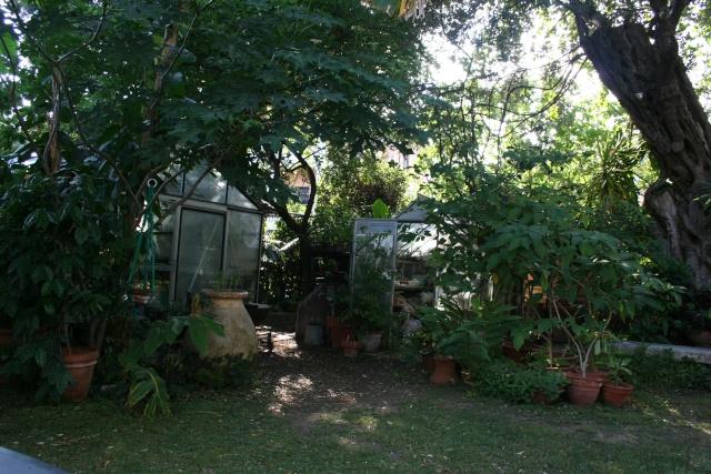 Serre de jardin Fond_d11