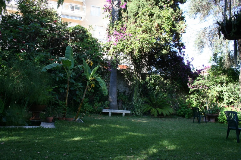 Macro Bougainvillée Jardin21