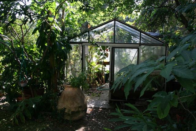Serre de jardin La_ser10