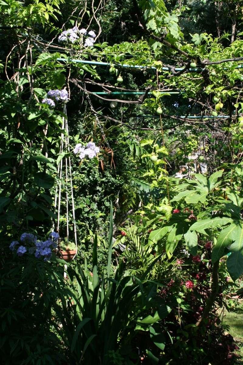 Tour de jardin Solanu19
