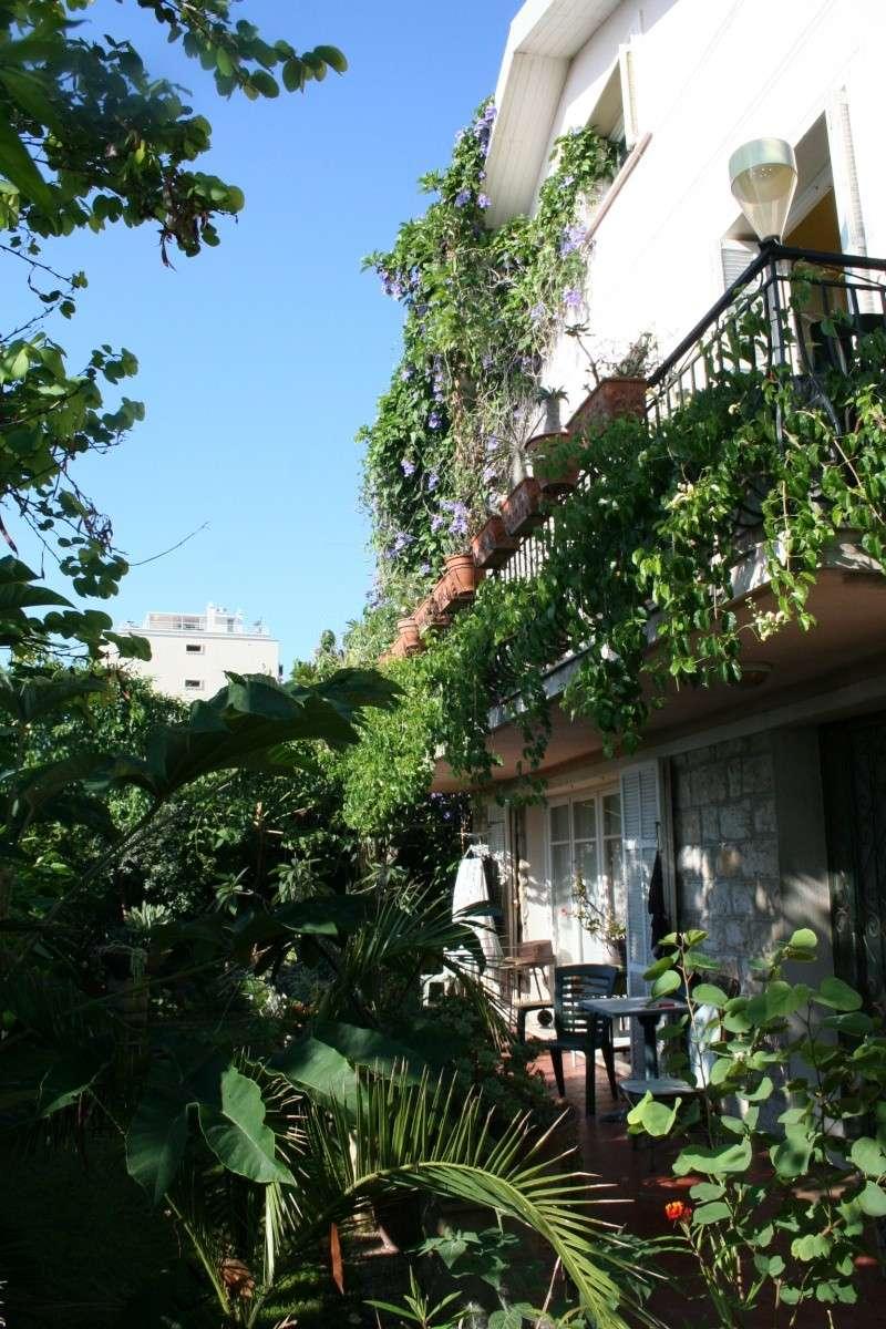 Ambiance dans mon jardin en ce mois d'aout Vue_su17