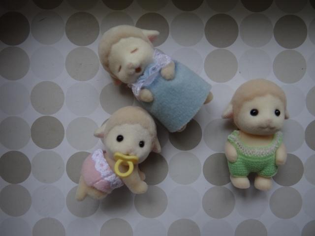 [2005] Moutons Dale Dsc01031