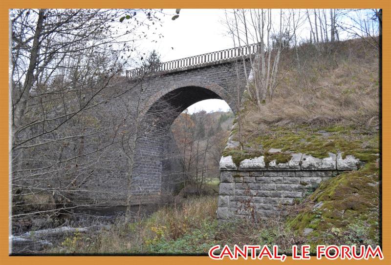 Les habitats préhistoriques de Cuze (Neussargues Moissac) Dsc_7418