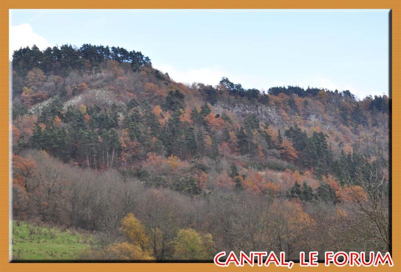Les habitats préhistoriques de Cuze (Neussargues Moissac) Dsc_7423