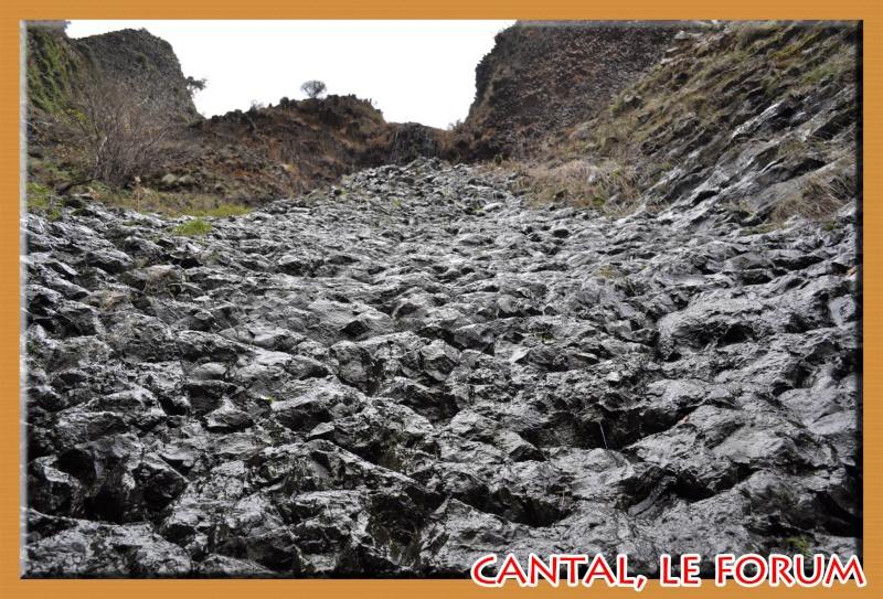 Les habitats préhistoriques de Cuze (Neussargues Moissac) Dsc_7510