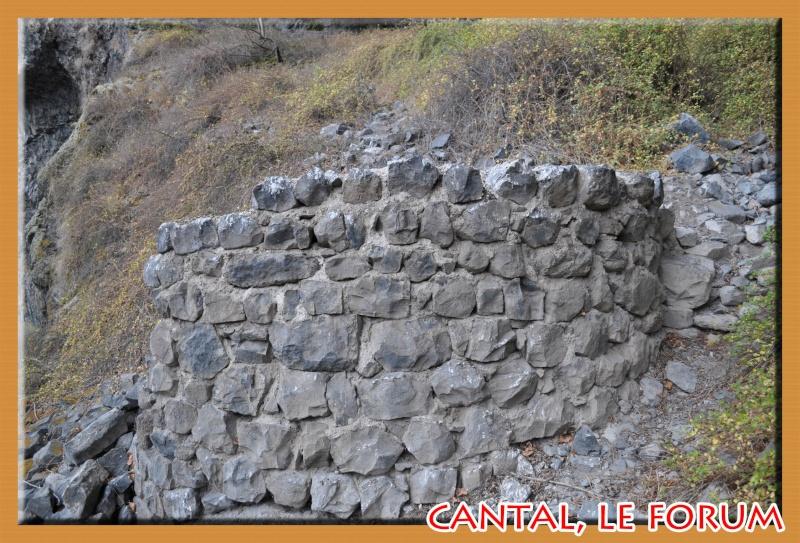 Les habitats préhistoriques de Cuze (Neussargues Moissac) Dsc_7511