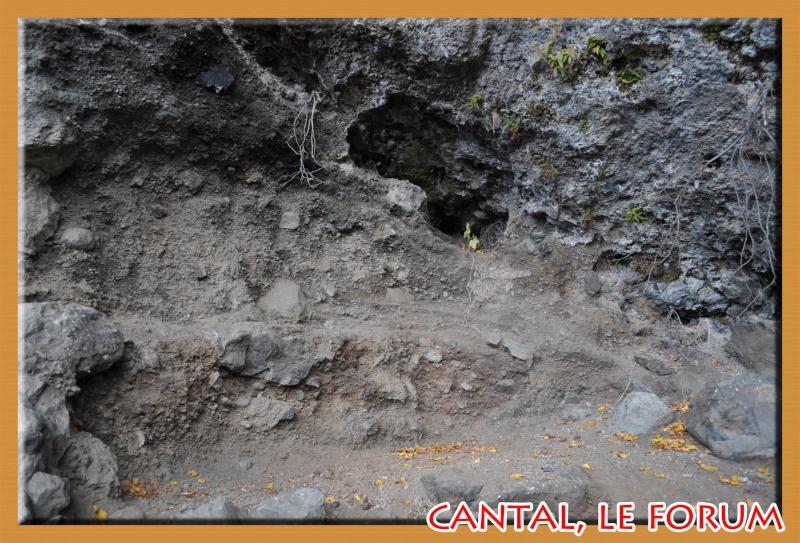 Les habitats préhistoriques de Cuze (Neussargues Moissac) Dsc_7512