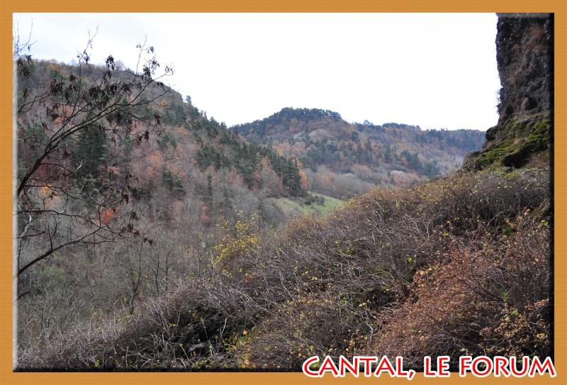 Les habitats préhistoriques de Cuze (Neussargues Moissac) Dsc_7513