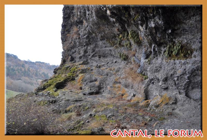 Les habitats préhistoriques de Cuze (Neussargues Moissac) Dsc_7514