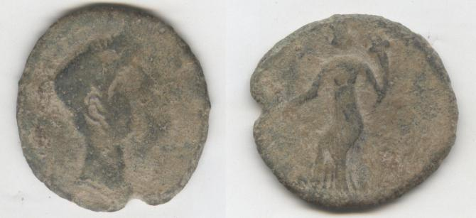 Semis de Irippo S. I a.C. (aprox) Foti51
